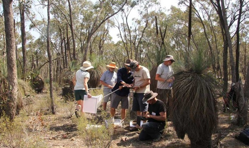 20th Box-Ironbark Ecology Course 2017