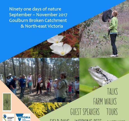 Biodiversity Spring 2017