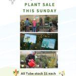 2017 Plant Sale